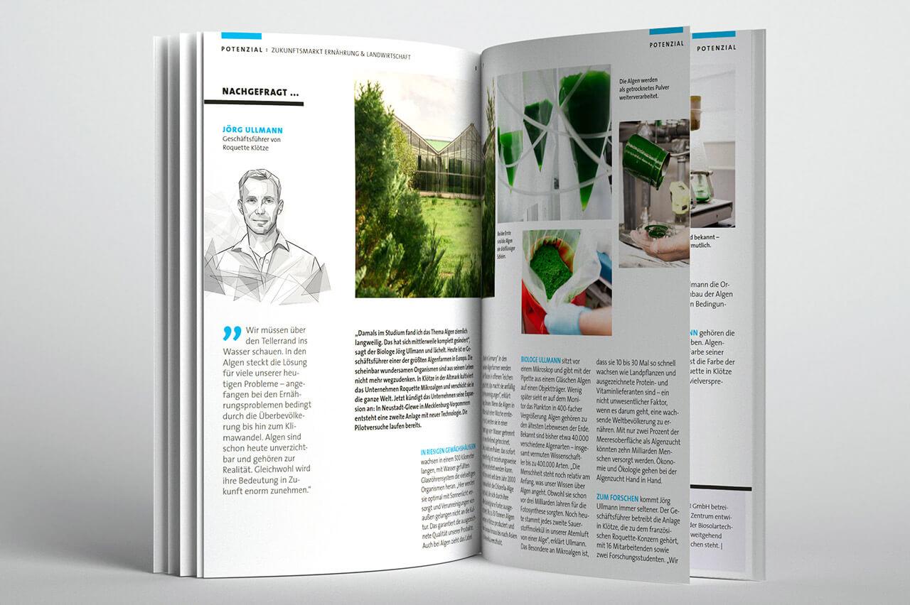 """Impulsmagazin """"Hier und Jetzt"""" - Textbüro Wortschatz: Text, Bildrecherche"""